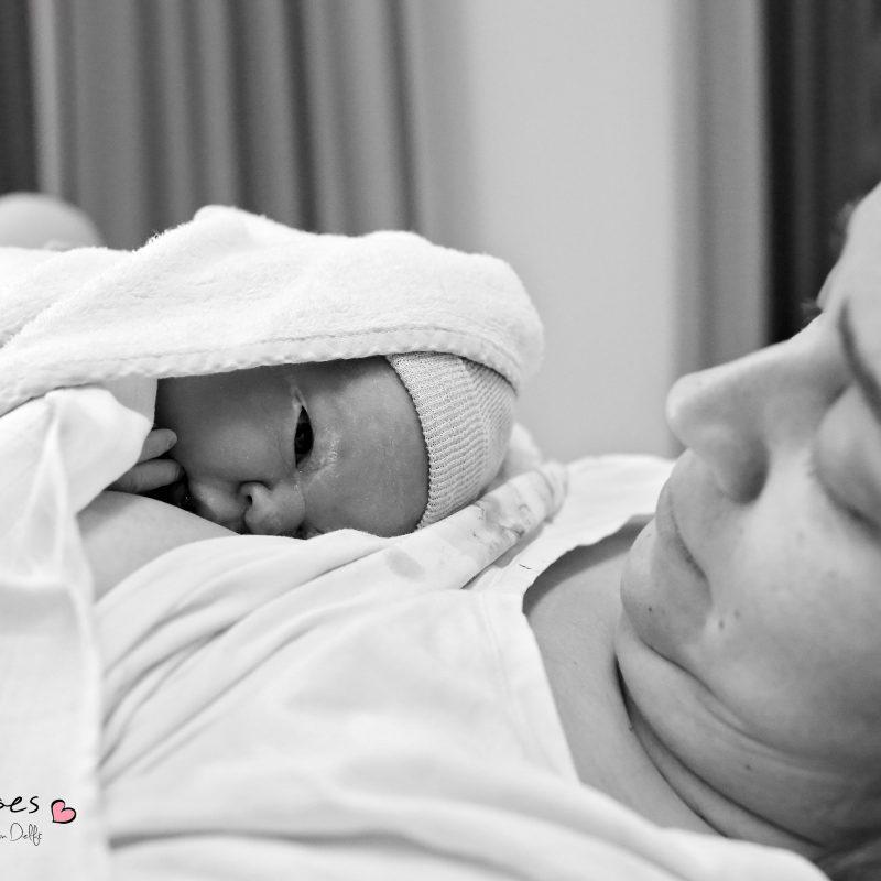 Bodhi – De geboorte van een klein beertje